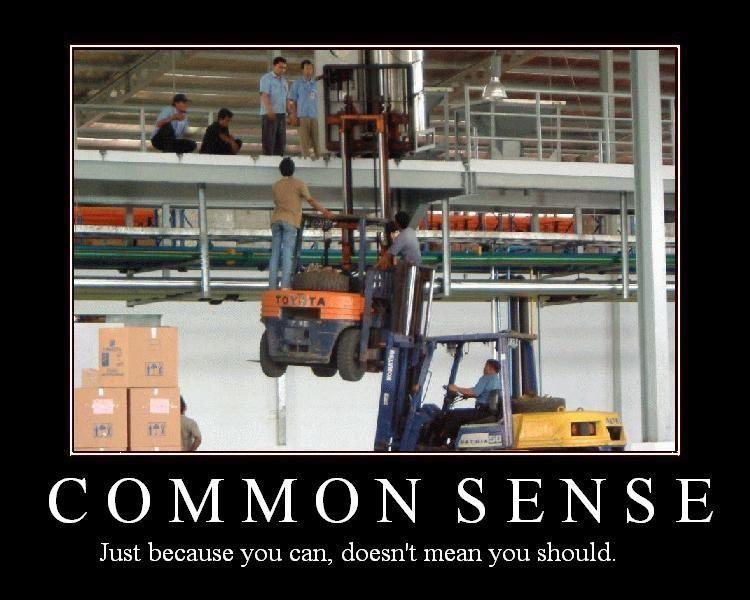 common sense media. hot 28: Common Sense Media CEO